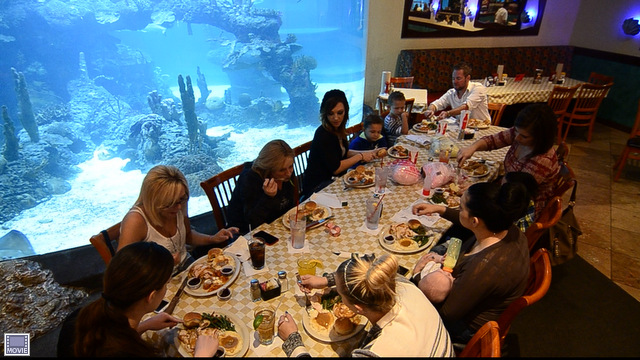 diners in front of shark tank