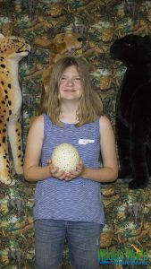 Ostrich Egg Painting 94